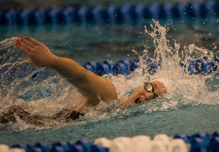 Four Schools Split ACC Swimming Diving Weekly Awards