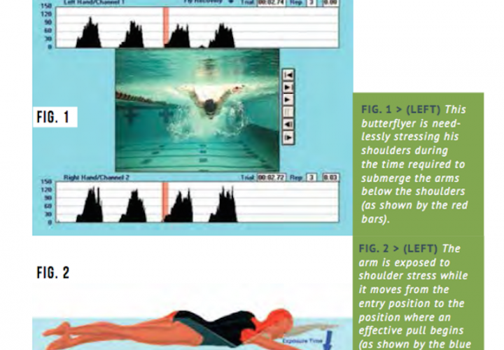 Swimming Technique Misconceptions Swim Through The Pain