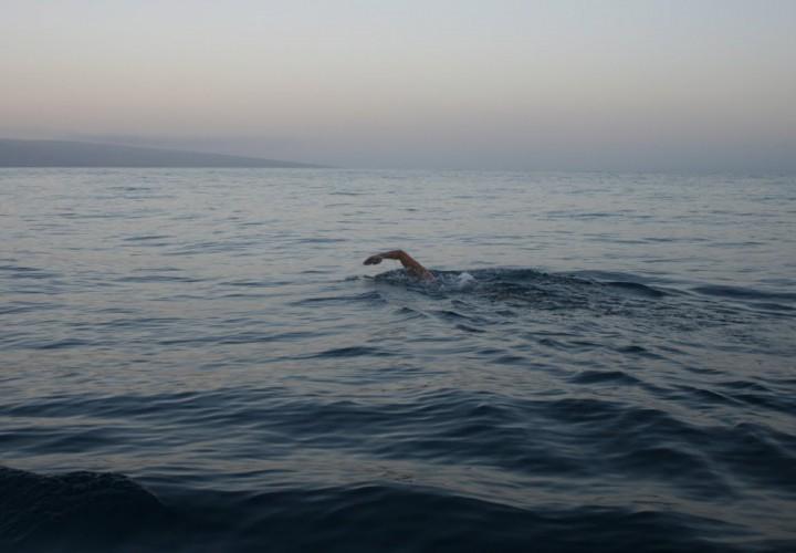 Lori King Swims Around Bermuda in Just Over 21 Hours